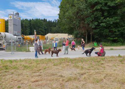 Hundegesundheitstag - Hundumfit - Gesunde Hunde